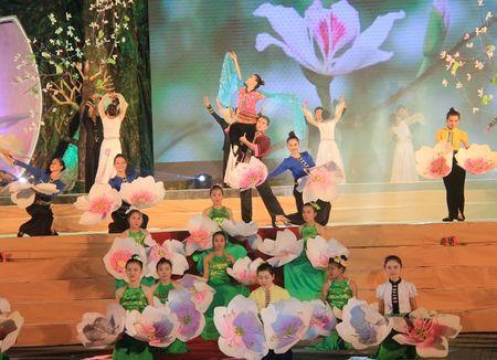 Khai mac Nam Du lich quoc gia 2017 - Anh 1