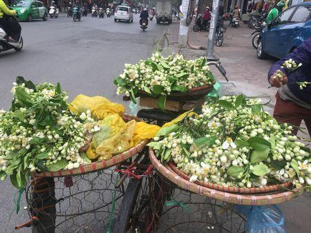Ve dep tinh khoi hoa buoi tren duong pho Ha Noi - Anh 3