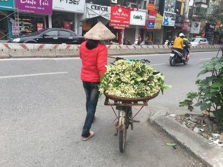 Ve dep tinh khoi hoa buoi tren duong pho Ha Noi - Anh 5