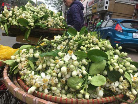 Ve dep tinh khoi hoa buoi tren duong pho Ha Noi - Anh 9