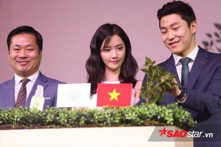 Yoona up mo ke hoach tro lai Viet Nam nhan dip ki niem 10 nam thanh lap SNSD - Anh 7