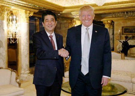 Thu tuong Abe mang gi toi My 'lam qua' cho Tong thong Trump - Anh 1