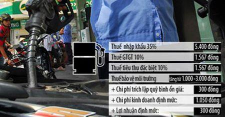 Doanh nghiep TP HCM khong ung ho tang thue moi truong xang, dau - Anh 1