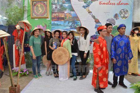 Dau an van hoa Viet Nam noi bat tai Le hoi ASEAN+3 - Anh 7