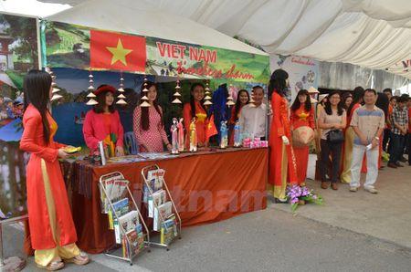 Dau an van hoa Viet Nam noi bat tai Le hoi ASEAN+3 - Anh 8