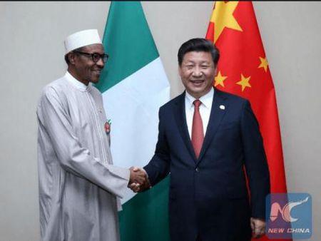 Nigeria co tham them noi dau Trung Quoc? - Anh 2