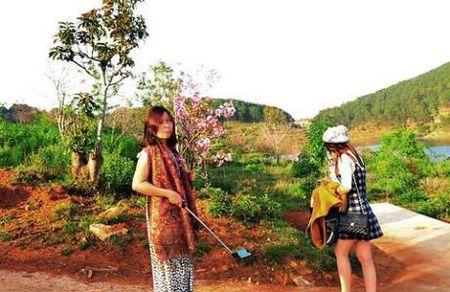 Vu be hoa Da Lat: Binh Thuan khong nhan nhuong - Anh 1