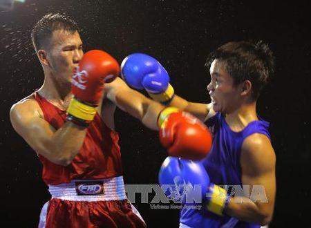Khai mac Giai Boxing Dai hoi The duc the thao Dong bang song Cuu Long - Anh 1