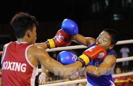 Khai mac Giai Boxing Dai hoi The duc the thao Dong bang song Cuu Long - Anh 2