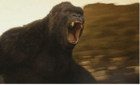 Khan gia nuoc ngoai noi gi ve 'Kong: Dao Dau Lau'? - Anh 1