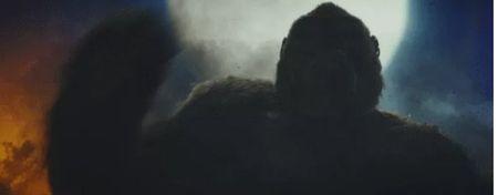 Khan gia nuoc ngoai noi gi ve 'Kong: Dao Dau Lau'? - Anh 2
