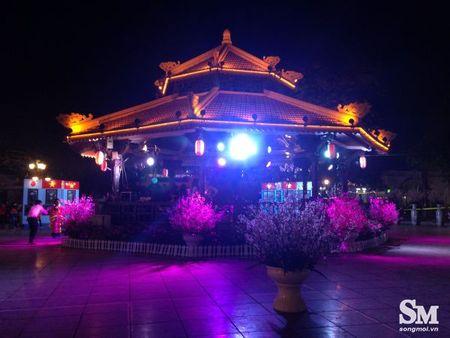 Le hoi hoa anh dao Ha Noi 2017: 100% hoa that nhung kem sac - Anh 14