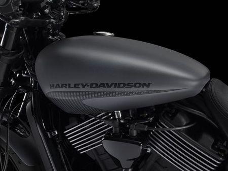 Harley-Davidson trinh lang Street Rod 2017 gia hon 200 trieu dong - Anh 7