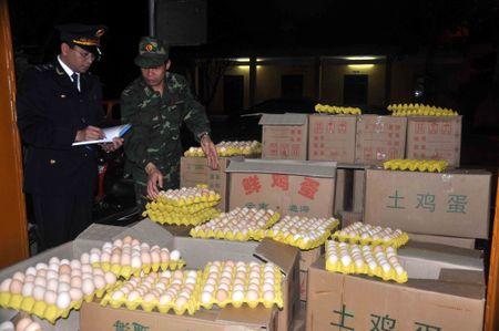 Quang Ninh: Hai quan bat lien tiep 2 vu van chuyen 18.000 qua trung ga lau - Anh 2