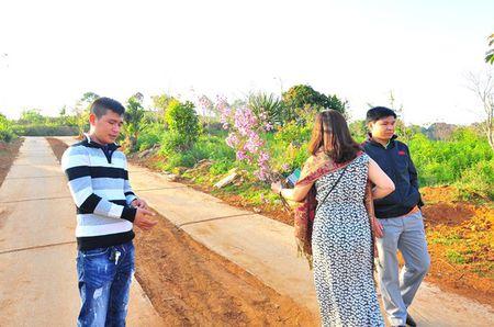 Vu be hoa: UBND tinh Binh Thuan yeu cau PGD So Tu phap cong khai xin loi - Anh 1