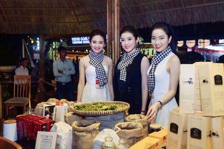 Ngoc Han, Huyen My, Ngoc Van duoc 'san don' o Le hoi ca phe Tay Nguyen - Anh 5