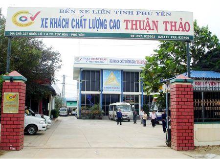 Doi xe 'lao doc khong phanh' cua 'bong hong vang' Thuan Thao - Anh 1