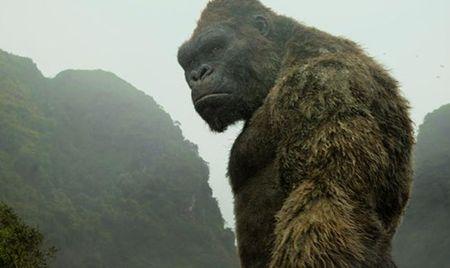 """""""Kong: Dao dau lau"""" dat 104 ti dong sau 6 ngay cong chieu - Anh 3"""