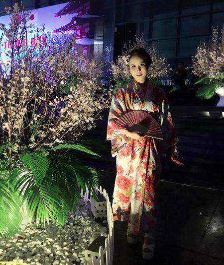 5.000 canh hoa anh dao duoc trung bay tai Vinh Phuc - Anh 2