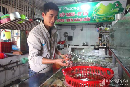 Cua Lo huong toi du lich bien bon mua - Anh 3