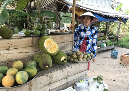 Sot mit Thai 'sieu som', gia cao gap gan 10 lan binh thuong - Anh 1