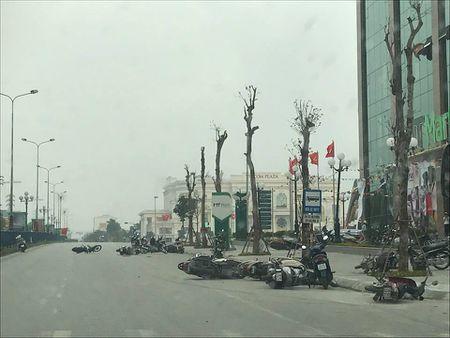 Giong loc quat nga hang chuc xe may dang luu thong tren duong - Anh 1