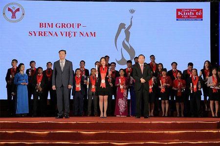 BIM Group - Syrena Viet Nam nhan giai thuong Thuong Hieu Manh Viet Nam 2016 - Anh 1