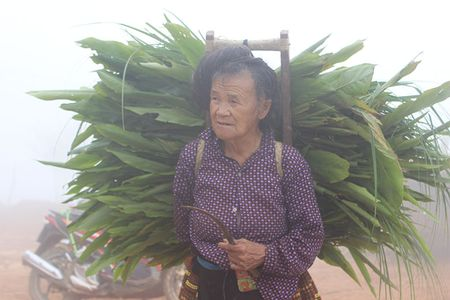 Dac san che Ta Xua, Bac Yen vi sao co gia tien trieu van dat khach? - Anh 4