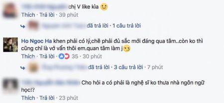 Bi che 'khong xung danh nghe si', Ho Ngoc Ha dap tra thang thung - Anh 1