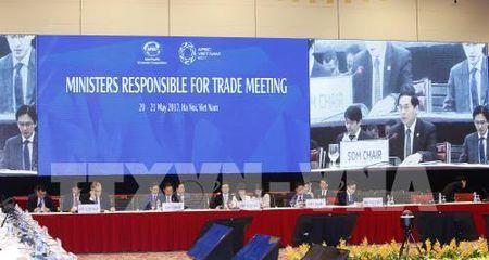APEC 2017: Thu tuong du le khai mac Hoi nghi Bo truong phu trach Thuong mai APEC - Anh 4