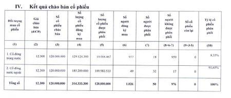 NDT nuoc ngoai mua 91,65% trong dot dau gia co phieu Viglacera - Anh 2