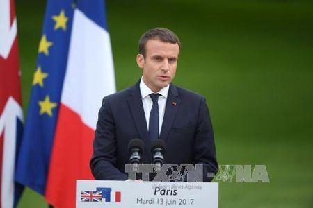 Bau cu Ha vien Phap: Dang cua Tong thong Macron thang ap dao - Anh 1