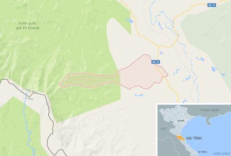 Dung 2 phong ngu cua gia dinh lam 'bai dap' cho khach mua dam - Anh 2