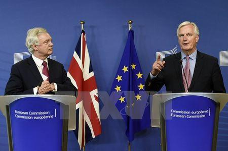 EU va Anh thong nhat cac uu tien va lich trinh dam phan Brexit - Anh 1