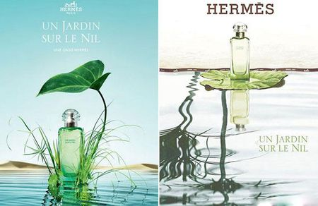 Hermes Un jardin: An tinh mui huong khi xa vong tay chang - Anh 7