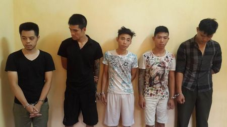Ha Noi: Bat nhom thanh nien hanh hung nguoi phu nu, cuop 2 con cho phoc - Anh 1