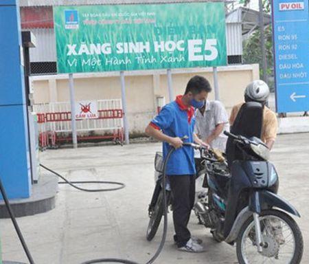 Lam Dong moi co 8,4% cua hang ban xang E5 - Anh 1