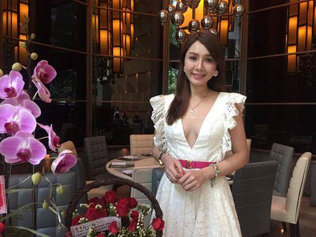 Helen Thanh Dao: Toi bi chong bao hanh - Anh 1