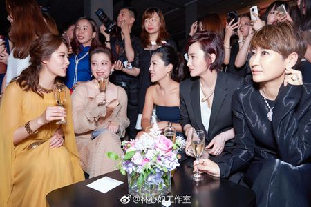 Lam Tam Nhu do sac gai mot con voi Chuong Tu Di - Anh 3