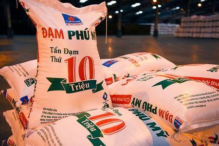 Nha may Dam Phu My can moc san luong 10 trieu tan ure - Anh 1