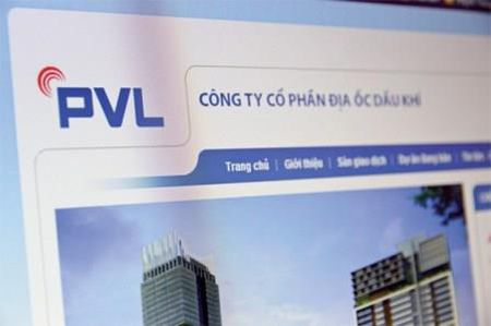 PVL lo rong hon 4 ty dong nua dau nam - Anh 1