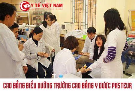 Mien hoc phi Cao dang Dieu Duong Ha Noi, Tp HCM, Yen Bai nam 2017 - Anh 3