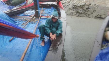 Bao so 2: San sang di doi hang van dan tu Thanh Hoa - Ha Tinh - Anh 10