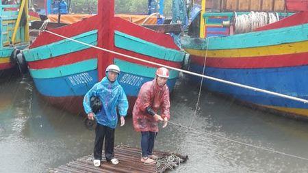 Bao so 2: San sang di doi hang van dan tu Thanh Hoa - Ha Tinh - Anh 11