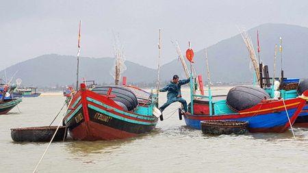 Bao so 2: San sang di doi hang van dan tu Thanh Hoa - Ha Tinh - Anh 12