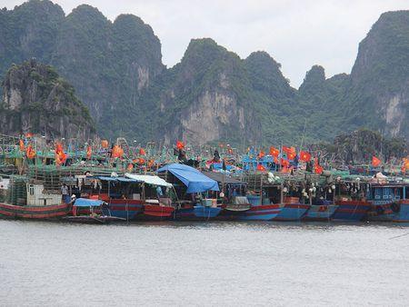 Bao so 2: San sang di doi hang van dan tu Thanh Hoa - Ha Tinh - Anh 16