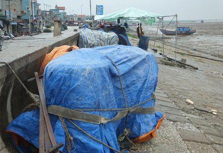 Bao so 2: San sang di doi hang van dan tu Thanh Hoa - Ha Tinh - Anh 3