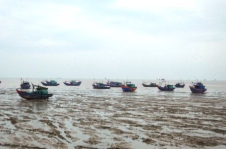 Bao so 2: San sang di doi hang van dan tu Thanh Hoa - Ha Tinh - Anh 4