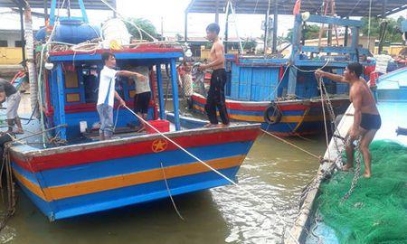 Bao so 2: San sang di doi hang van dan tu Thanh Hoa - Ha Tinh - Anh 6