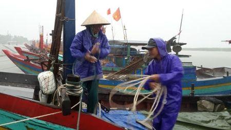 Bao so 2: San sang di doi hang van dan tu Thanh Hoa - Ha Tinh - Anh 8